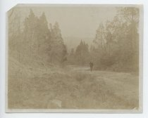 Image of Richmond Hill Road, photo by Charles T. Whitehorn, ca. 1905
