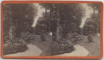 Image of Path to Greenhouses - Sister Linda with dog Prince - Stereoview
