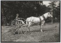Image of [Haying time at Ravenhurst / The hay rake] - Print, Photographic