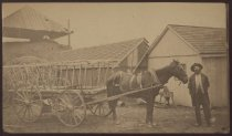 Image of Henry E. Cleveland with hay wagon, 1878