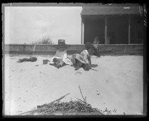 Image of [Austen children playing in the sand] - Negative, Glass-plate