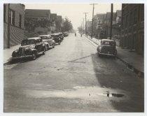 Image of [Winter Avenue] - Print, Photographic