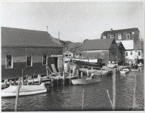 Image of [Lemon Creek, Princes Bay] - Negative, Film
