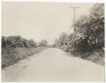 Image of [Todt Hill Road] - Print, Photographic