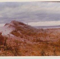 Image of 1979.508e - Photograph