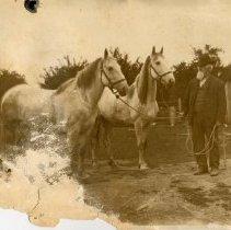 "Image of Print, Photographic - Copies: 1 (copy)  ""Elsie  Grandpa Metcalf. Newburg"" (back)"