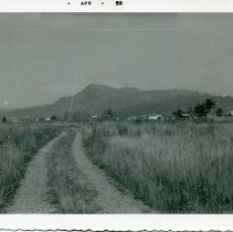 Image of Print, Photographic - Copies: 1 (copy)