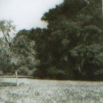Image of 4051P33 - Print, Photographic
