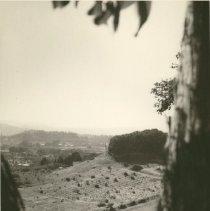 Image of 77.1.021 - Print, Photographic