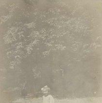 Image of 88.549.1 - Print, Photographic
