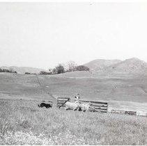 Image of 88.944.1 - Print, Photographic