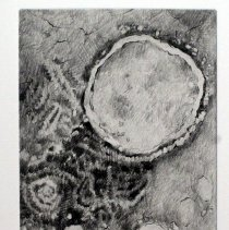 """Image of Microscapes """"Para Influenza"""""""