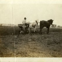Image of Potato planter - Oscar Heintz - Schoening Photograph Collection