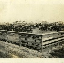 Image of Horse corral  - Schoening Photograph Collection