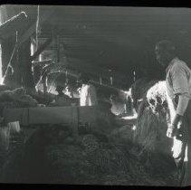 Image of Hemp Hackle House - Edward and Josephine Kemp Lantern Slide Collection