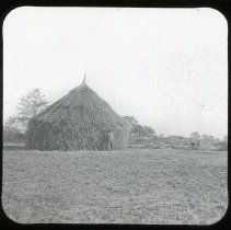 Image of Hemp Stack - Edward and Josephine Kemp Lantern Slide Collection