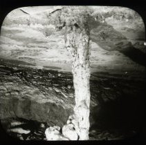Image of The Post Oak Pillar - H. C. Ganter Lantern Slides Collection