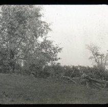 Image of Split rail fence  - Edward and Josephine Kemp Lantern Slide Collection
