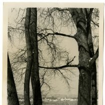 Image of Shawnee Park, Indiana Knobs, Louisville, KY, 1951 - Josephine Gertrude Simmons Collection