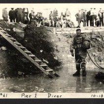 Image of Pier 1 Diver [012PC49.061]