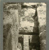 Image of Elkhorn coal                                                                                                                                                                                                                                                   - Rogers Clark Ballard Thruston Mountain Collection