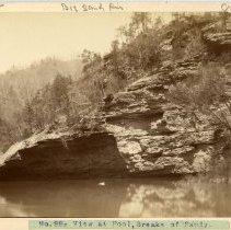 Image of RCBT-MT-231