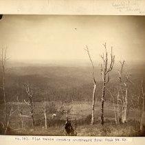 Image of Flat Woods                                                                                                                                                                                                                                                     - Rogers Clark Ballard Thruston Mountain Collection