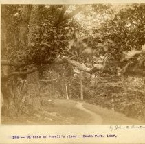 Image of Bank of Powell River                                                                                                                                                                                                                                           - Rogers Clark Ballard Thruston Mountain Collection