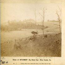 Image of Gladesville road                                                                                                                                                                                                                                               - Rogers Clark Ballard Thruston Mountain Collection