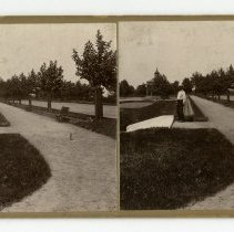 Image of Shawnee Park - Louisville and Indiana Views Stereocard Collection