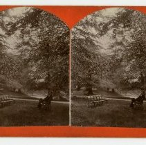 Image of Man on bench  - Louisville and Indiana Views Stereocard Collection