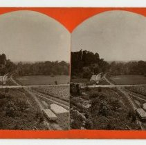Image of Zorn Avenue and Mellwood Avenue - Louisville and Indiana Views Stereocard Collection