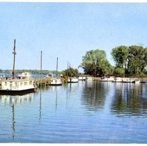 Image of Yacht Basin                                                                                                                                                                                                                                                    - Postcard Collection