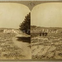 Image of 1891.001.178