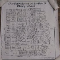 Image of Re-Subdivision of Section 3 (1989.30.19)