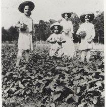 Image of Hermine & daughers picking strawberries (1994.01.04)