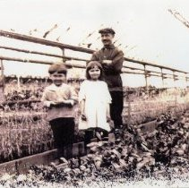 Image of Bernhard with children in greenhouse (1000.124.05c)