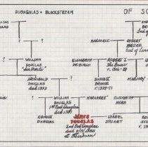 Image of Douglas family tree (1000.129.04a)