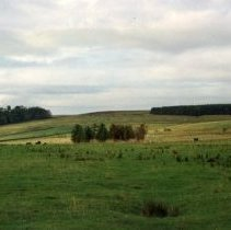 Image of Scotland (2008.203.05)