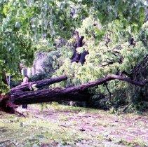 Image of 2008.153.138 - Damage to 4303 Bradley Lane