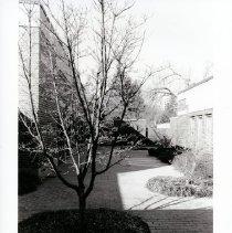 Image of 2008.334.03 - Leland Center