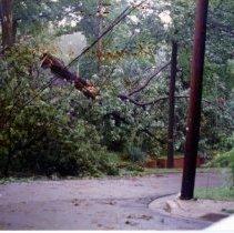 Image of 2008.359.04 - Damage to corner of Ridgewood Avenue and Thornapple Street