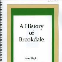 Image of 2013.08.01 - A History of Brookdale