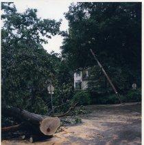 Image of ridgewood and thronapple