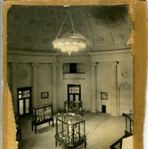 Image of Print, Photographic - B&W photo of inside of Rotunda showing display cases. Chandelier hanging from ceiling.