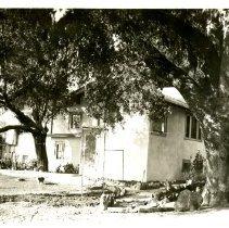 Image of Print, Photographic - Baer house - Backyard, Olmeda.