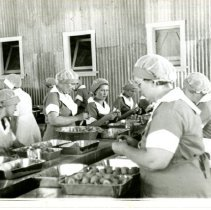 Image of Print, Photographic - B&W photo showing a group of women in hair nets cleaning fruit at large tables. (Caladero Products Co?)