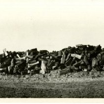 Image of Print, Photographic - B&W panoramic photo showing a huge pile of fire wood next to a dirt road.
