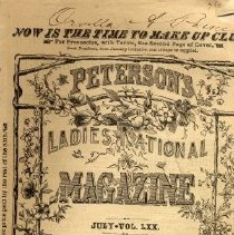 Image of Peterson's Ladies National Magazine, July 1876