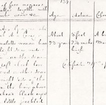 Image of FNR.603 - Free Negro Register